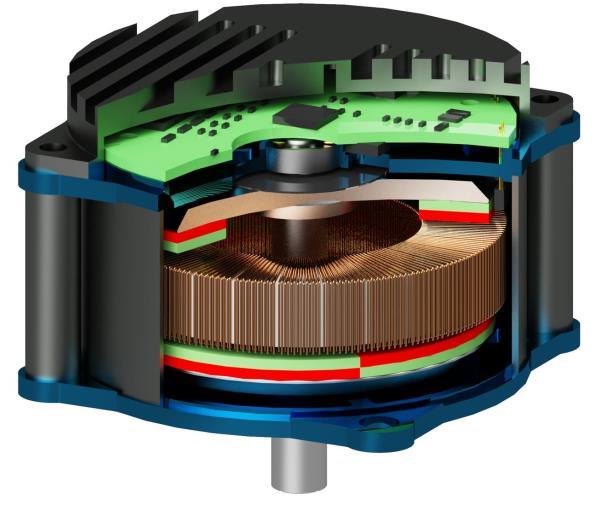High-Torque BLDC-Motor | Schnitt